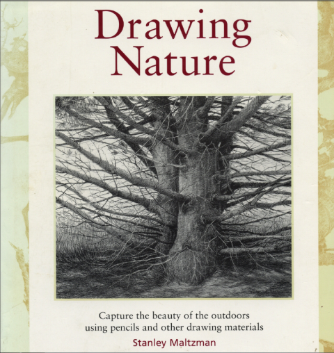 Drawing nature | Stanley Maltzman
