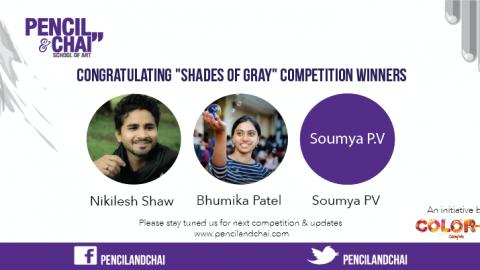 Shades Of Gray winners Artworks