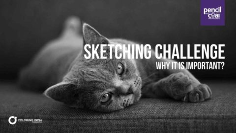 Sketching Challenge : Why it is important ?
