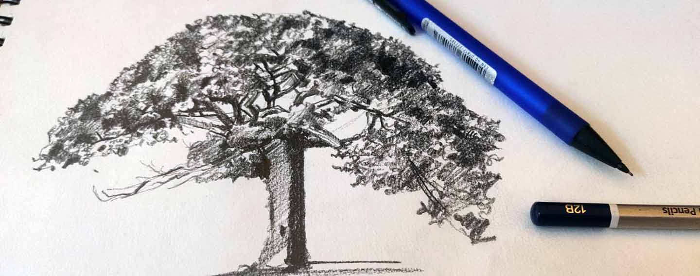 I love to paint, but is it necessary to learn sketching before painting?
